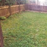 14 Ashvale Crescent Springburn Glasgow G21 1NE Garden