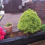180 Hamilton Road Mount Vernon Glasgow Lanarkshire G32 9QU Garden v6
