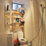 74 Torrisdale Street South Side Glasgow G42 8PJ bathroom
